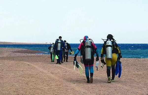 Divers in wetsuits heading for a shore dive