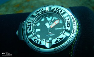 Citizen_Professional_1000_Front_Submerged