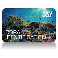 coral-identification