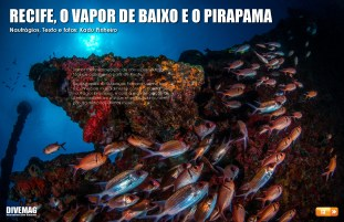 divemag63_Page_13