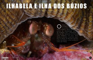 divemag74_Page_34