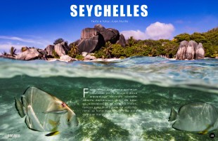 divemag76w_Page_39
