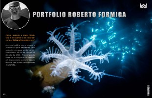 divemag76w_Page_63