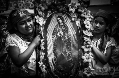 Peregrinos, la devoción y fe por la 'Morenita del Tepeyac'