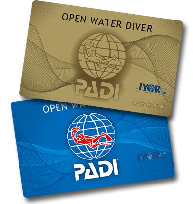 「国際サンゴ礁年」ロゴ入りCカード
