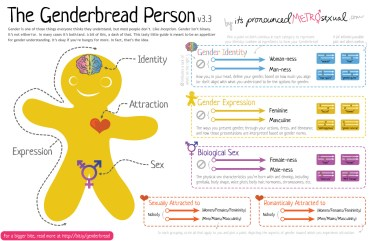 Genderbread-Person-3.3