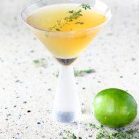 Thyme Tequila Fizz