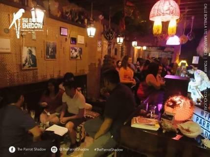 The Parrot Shadow Bar Miraflores 11