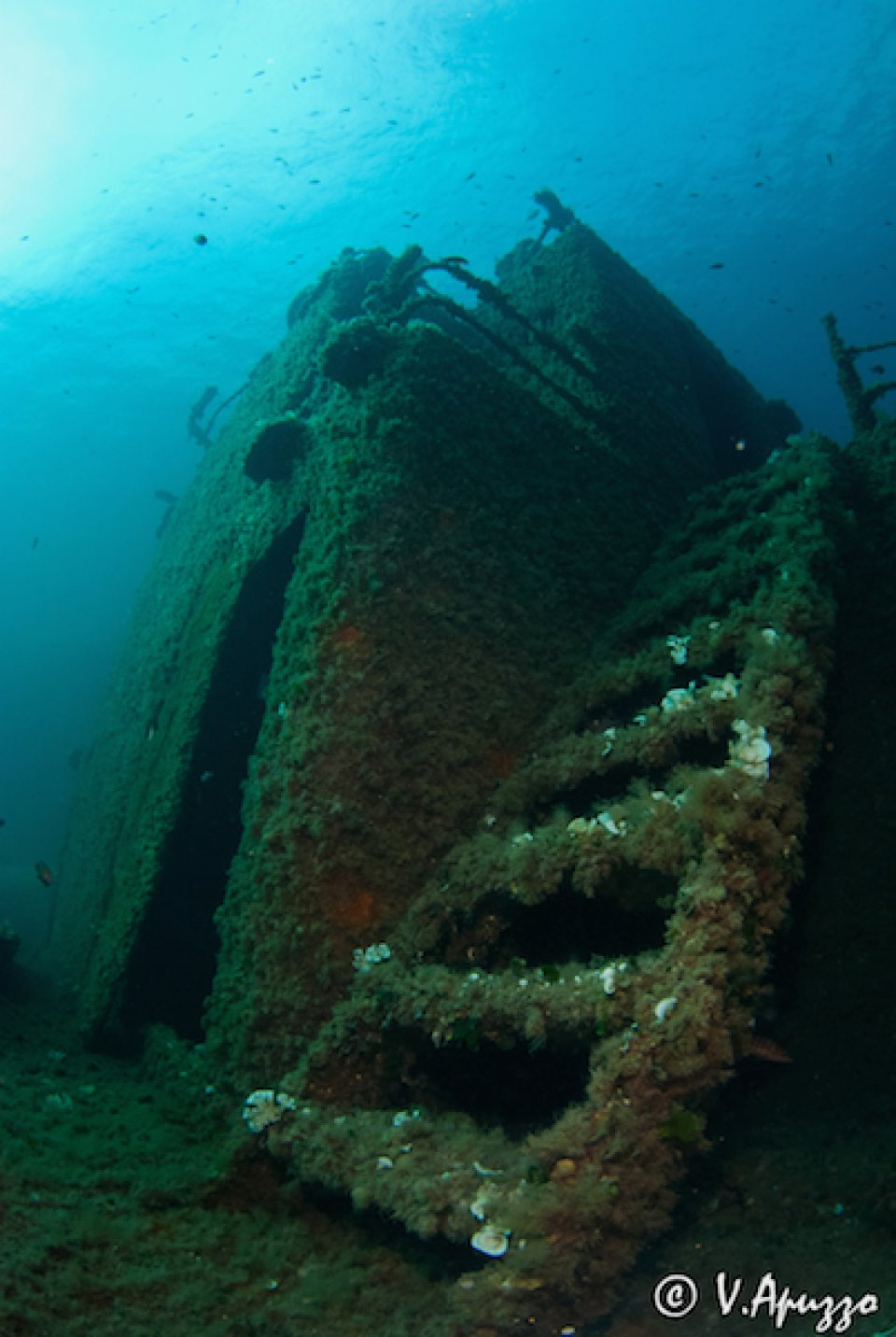 Angelika Wreck Diving in La Maddalena