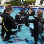 Divers preparing to descend