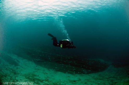 Dykker, om, god sikt, sandbunn, overflate, kråkeboller