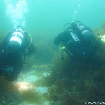 Turøy-ulykken (Redningsdykker) (Kurs i undervannsnavigasjon)