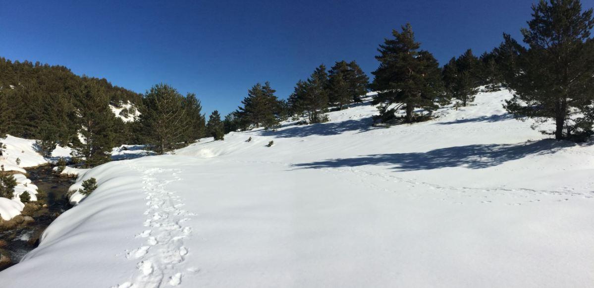 Ruta verde por la Sierra de Guadarrama (I)