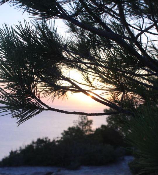 Sunset en Ibiza