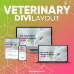 Divi Veterinary Layout