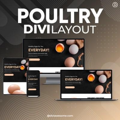 Divi Poultry Layout