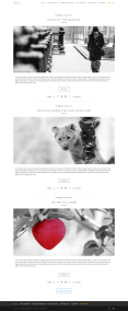 divi-category-layout-classic1