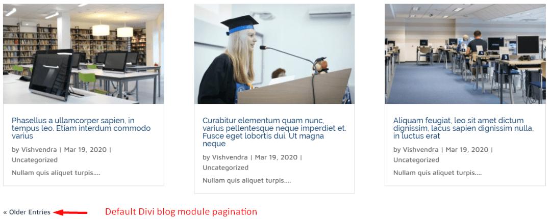 Default pagination of Divi blog module