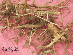 Xian He Cao