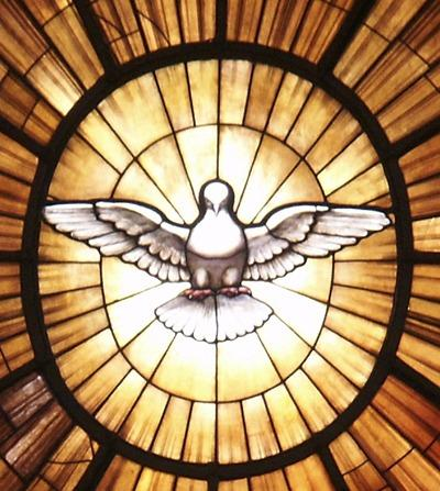 pentecost from vatican dove
