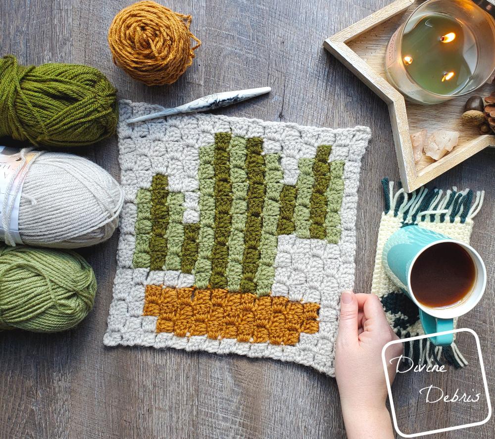 Plant C2C CAL – Cactus C2C Square Free Crochet Pattern