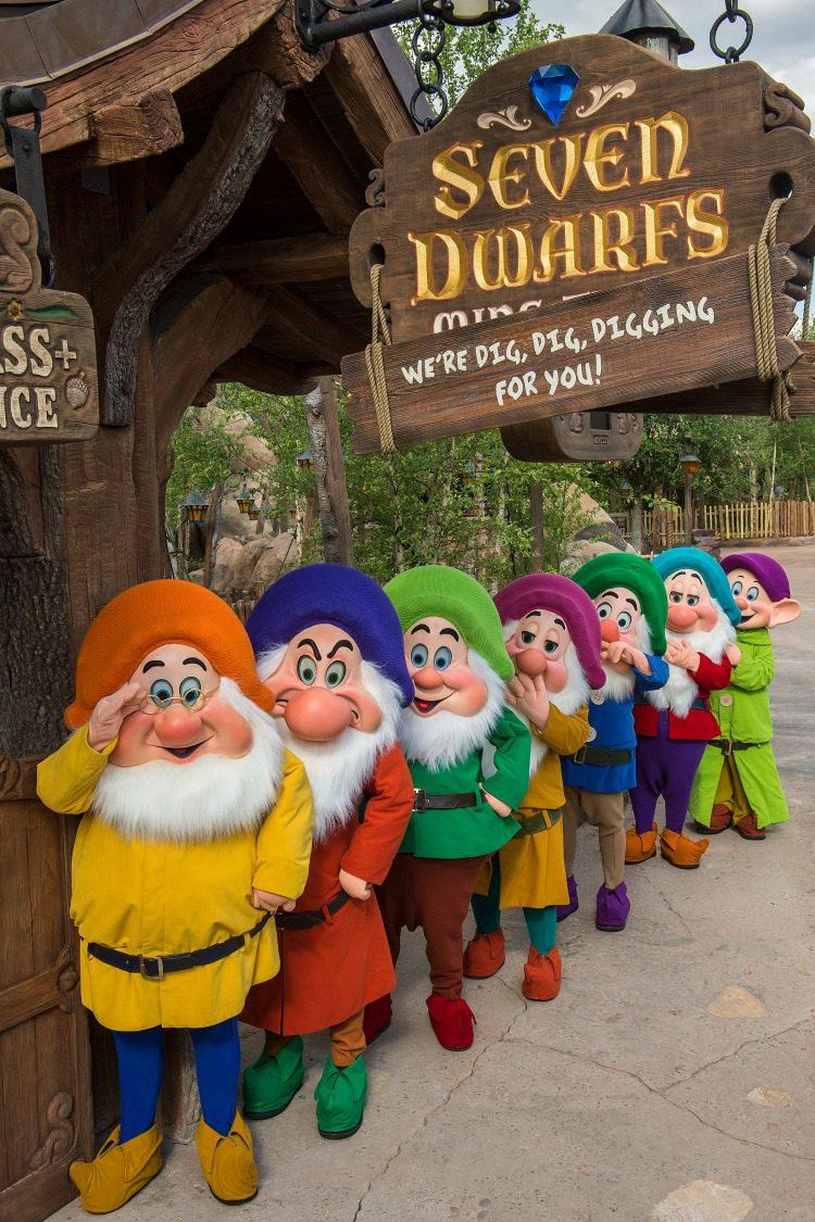 Seven Dwarfs Mine Train 4