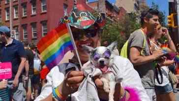 gay pride 2446420 960 720