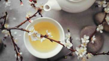 9 Surprising Health Benefits of White Tea 1