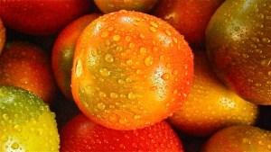 bespoten-groente-en-fruit