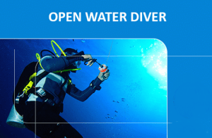 Дайвинг курс Open Water Diver