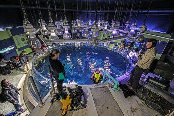 Paul Boissinot at the Quebec Aquarium. Photo © Jeffrey Gallant   Diving Almanac