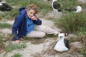 Dr. Sylvia Earle spends a moment with Wisdom, the oldest known living bird. The Laysan albatross at Midway Atoll is at least 61. Photo by Susan Middleton/USFWS