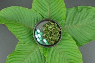 Why Will Your Body Thank you after Using Red Maeng Da Kratom?