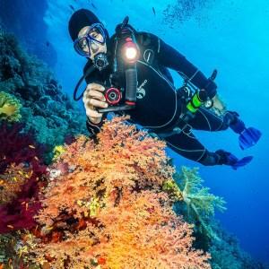 Aparat foto cu carcasă, SeaLife Reefmaster RM-4K / SL350