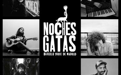 El ciclo Noches Gatas continúa en 2020 con cinco conciertos más