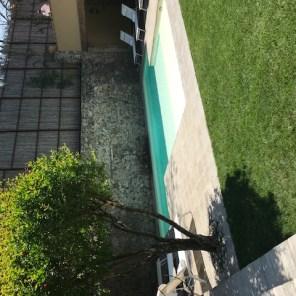 Hotel Santa Monica pool.