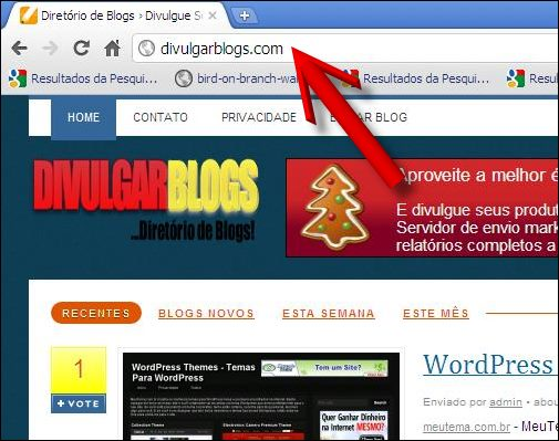 homepage divulgar blogs