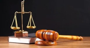 محكمة شبين الكوم