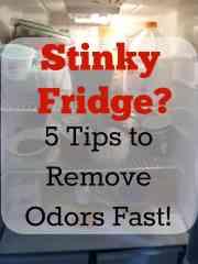 Stinky Fridge?  Five Tips To Remove Odors Overnight