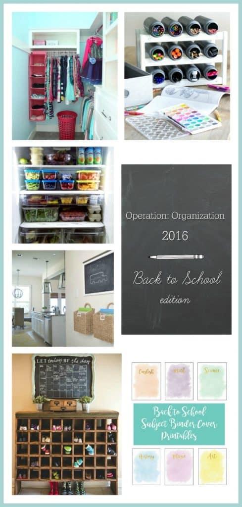 Operation-Organization-Collage-Day-2-1-489x1024