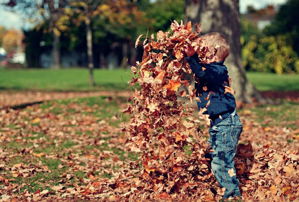 Un infant juga amb fulles seques en un parc