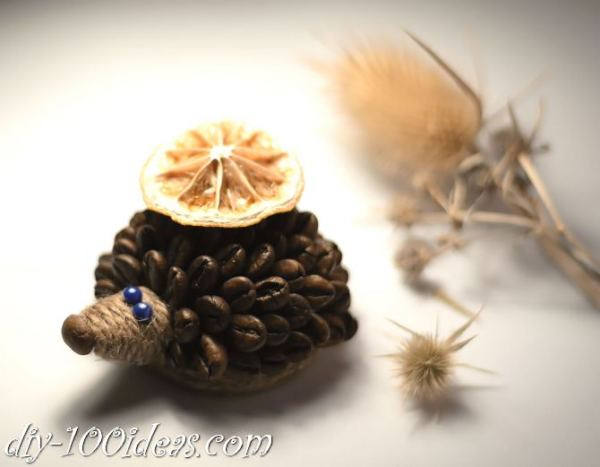 DIY Coffee Bean Hedgehog (1)