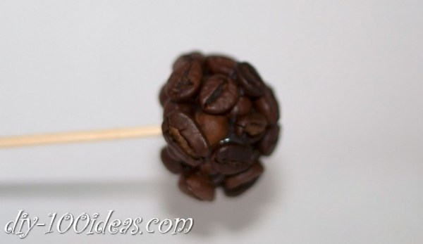 Coffee beans flowers (14)
