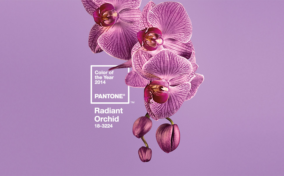 Pantone colour Radiant Orchid