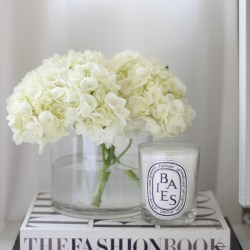 home decor styling secret books