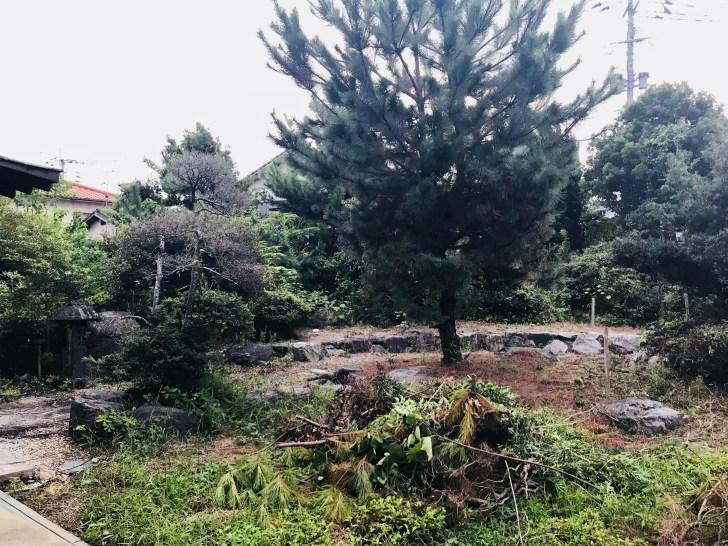 庭の全体像