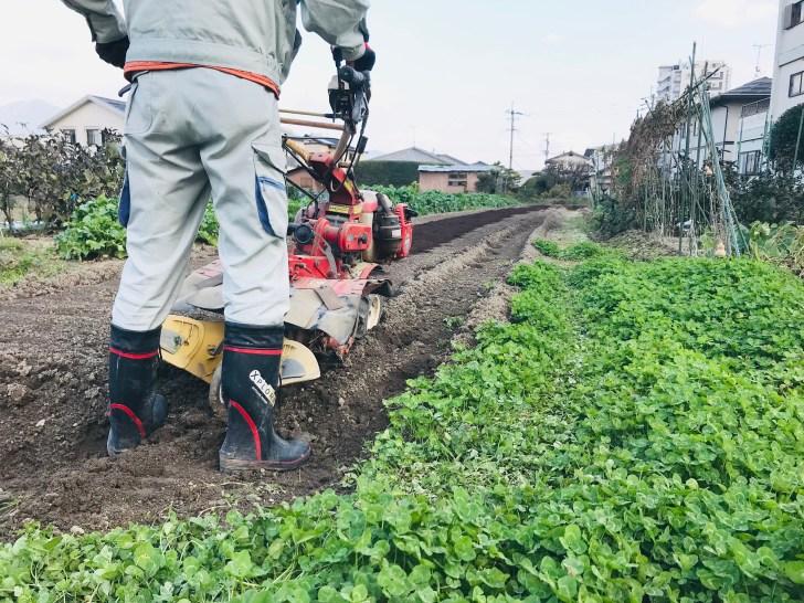耕運機で土寄せする