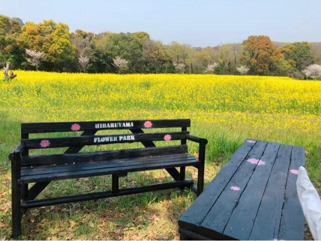 春の花まつりは疲れてもベンチがあるので安心