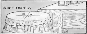 Read more about the article Humane Rat Trap – Barrel Rat Trap