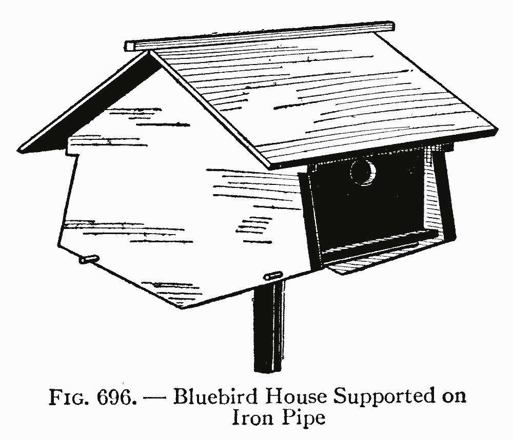 Fig. 696. — Bluebird House Supported on Iron Pipe